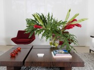 Design Living Rooms / Photo Art