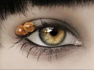 eggs / Eyes