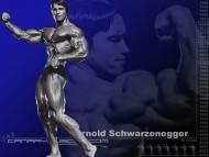Arnold Schwarzenegger / Body Building