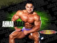 Ahmad Haidar, IFBB Pro / Body Building