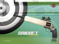 Cricket / Sports
