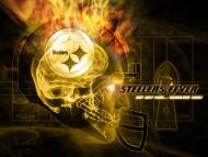 Pittsburgh Steelers / Football