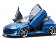 Peugeot LSD lambo doors / Peugeot