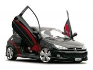 LSD lambo doors open up / Peugeot