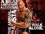 A Beast / Wrestling WWE