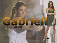 Gabrielle Anwar / Burn Notice