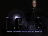 ncis, ncis wallpapers, abby, ziva, tony, gibbs, mcgee, ducky, cbs, navy / NCIS