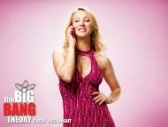 High quality The Big Bang Theory  / TV Serials