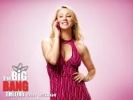 High quality The Big Bang Theory  / TV Serials