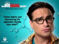 The Big Bang Theory / TV Serials