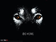 wolf bewere / True Blood
