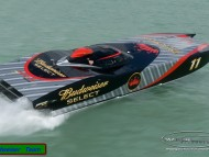 Budweiser Powerboat / Ships and Boats