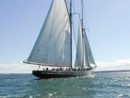 Yacht / Frigates & Sailing ships