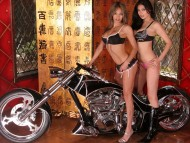 beauties and beast / Girls & Motorcycles