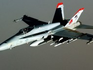 F-18 Hornet / Military Airplanes