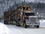 Heavy Haulin' Freightliner / Trucks