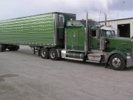 Green Kenworth / Trucks